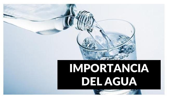 Necesito 30 Preguntas Sobre La Importancia Del Agua Brainly Lat