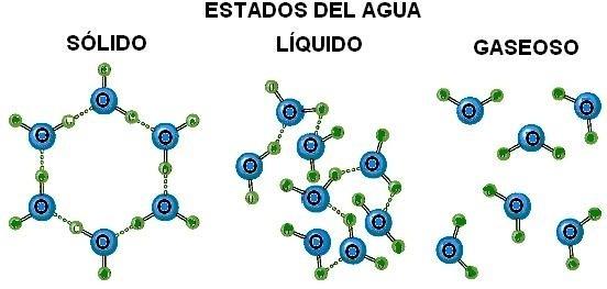 porque el agua forma enlaces de hidrgeno dibuja la estructura del
