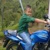 Pollito1032070040