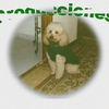 myriammorales83