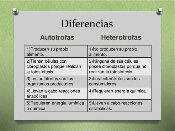 Cuadro De Las Diferencias Entre La Nutricion Autotrofa Y Heterotrofa Brainly Lat