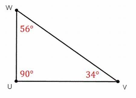 Imágenes de triangulo escaleno - Brainly.lat