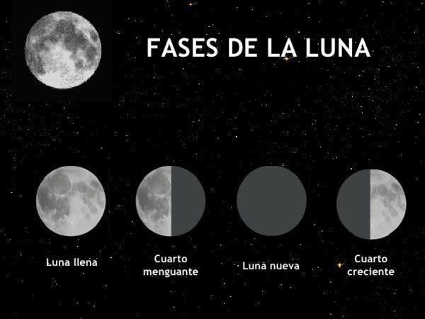 Describo la diferencia entre las lunas Cuarto Menguante y Cuarto ...