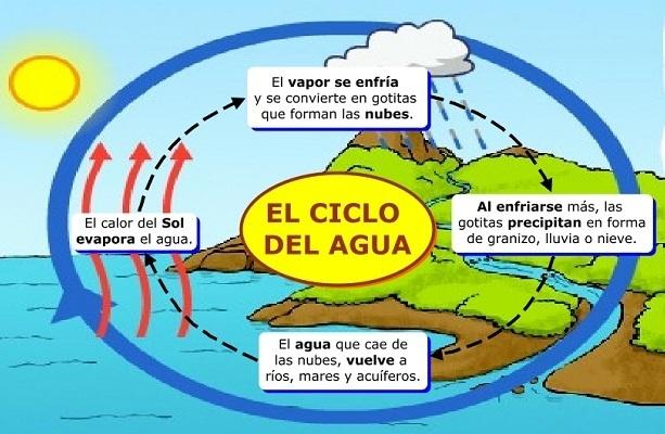 Que Sucede Sucede Durante El Ciclo Hidrológico Brainly Lat