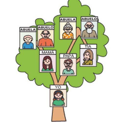 Que Es Un Arbol Genealogico Y Para Que Sirve Ayuda Porfa Brainlylat