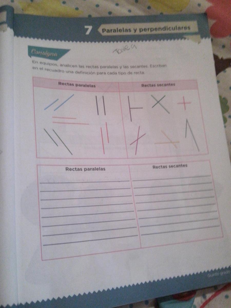En Equipos Analicen Las Rectas Paralelas Y Las Secantes Escriban En El Recuadro Una Definicion Para Brainly Lat