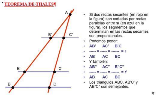 Que Es El Teorema De Tales Brainly Lat