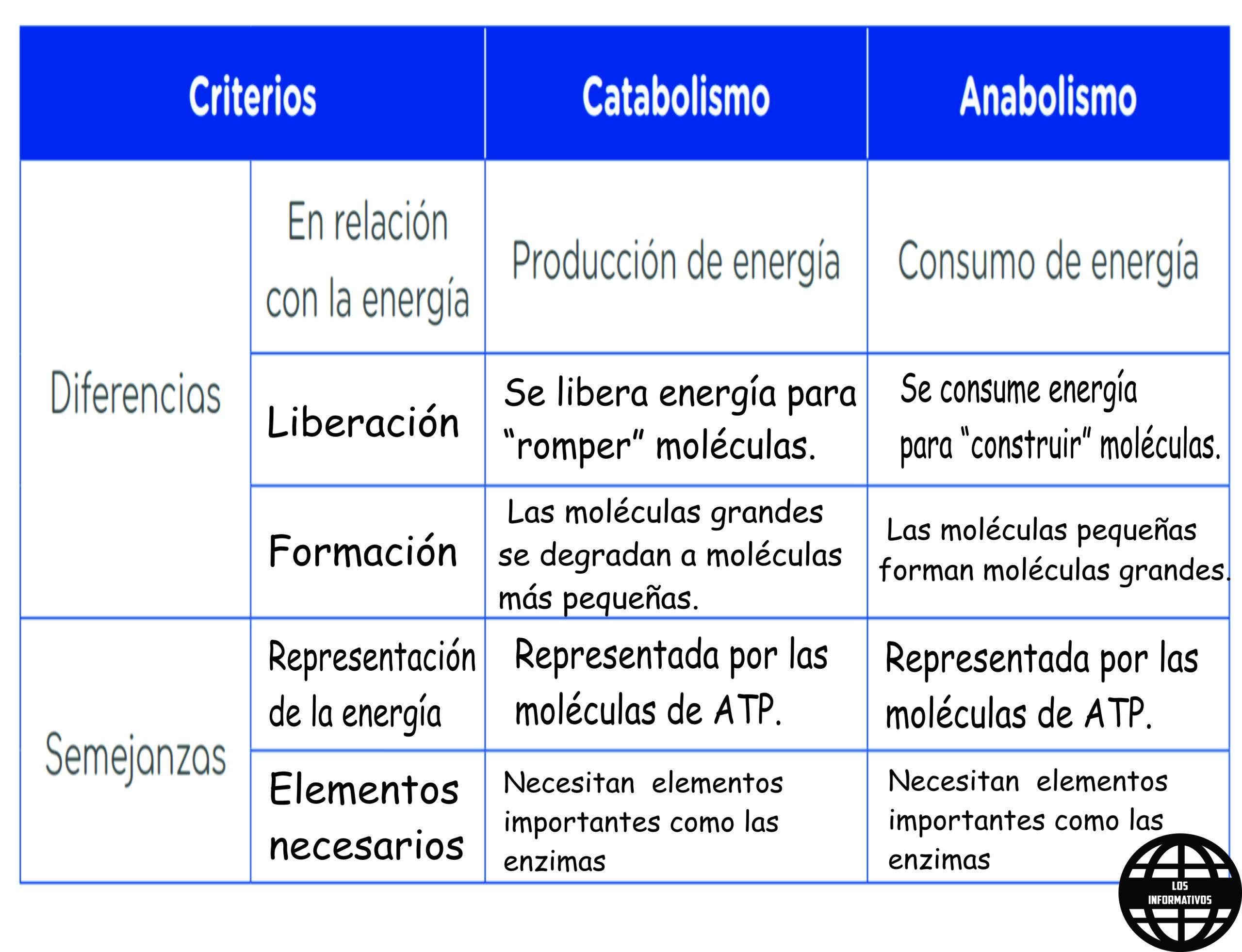 Cuadro Comparativo Entre Catabolismo Criterios Y Anabolismo Diferencias Y Semejanza Brainly Lat