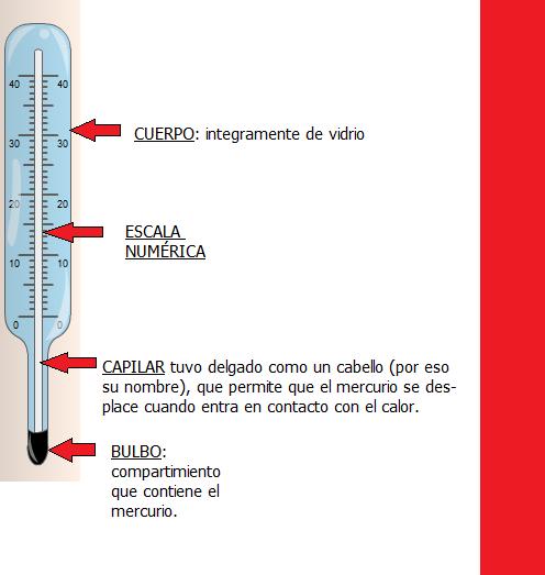 Las Partes De Un Termometro Brainly Lat Sustancia termometrica,es liquido contenido en el termometro, generalmente es alcool con colorante o mercurio. las partes de un termometro