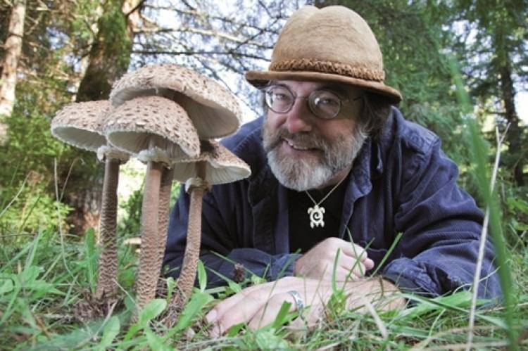 Profesional Que Estudia El Reino Fungi Alguien Sabe Brainly Lat