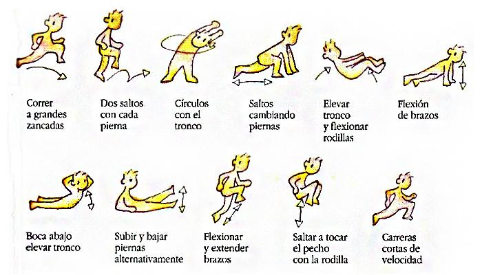 ejercicios de calentamiento y estiramiento antes de una ...
