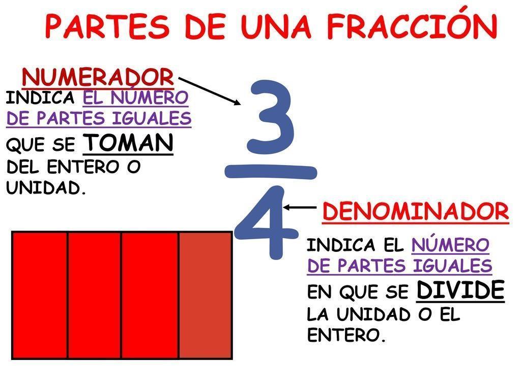 Que nos indica el denominador y el numerador en una fraccion ...