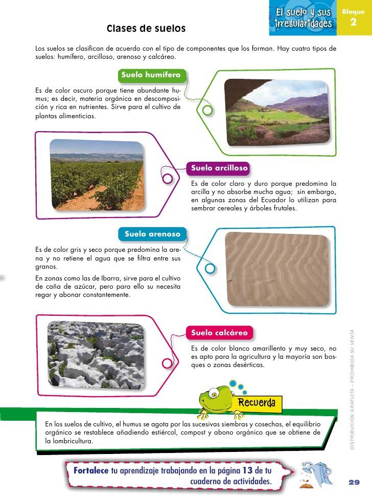 Dibuja y describe cuatro clases de suelo - Clases de suelo ...