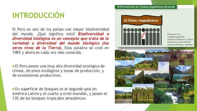 Resumen Analitico De La Biodiversidad Del Peru Brainly Lat