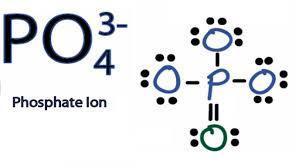 Por Qué El Fosfato Po4 Tiene Carga 3 Brainly Lat