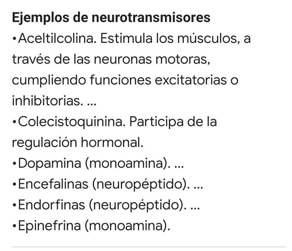 Que Son Los Neurotransmisores Y Cuatro Ejemplos Porfiss Brainly Lat