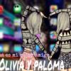 paoli4010