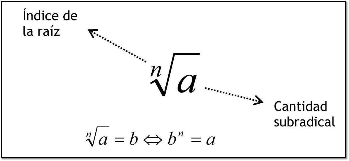 cual es la raiz cuarta de 625? - Brainly.lat