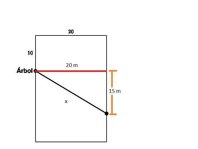 3 Paquetes Tendedero de Nailon a Prueba de Viento para Exteriores de 5 m // 16,4 pies tendedero port/átil para Secado de Ropa Percha de Viaje o Uso dom/éstico tendedero para Acampar al Aire Libre