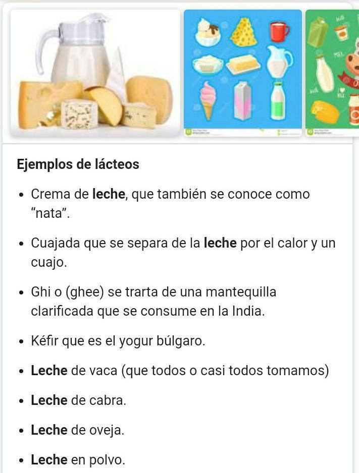 10 Ejemplos De Alimentos Lacteos Brainly Lat