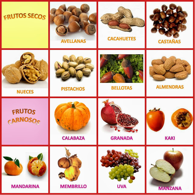 Image result for frutos secos y carnosos