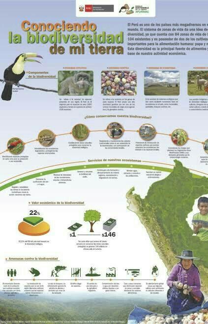 1 Como Es La Biodiversidad En El Peru 2 Que Determina Que Vivan Plantas Y Animales En Diferentes Brainly Lat