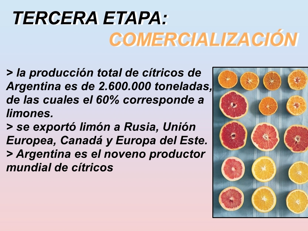 Cual es el circuito productivo del limon es para hoy for Chimentos de hoy en argentina