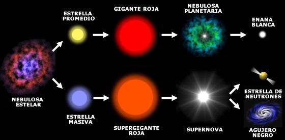 Cuáles son las fases de la vida de una estrella promedio ...
