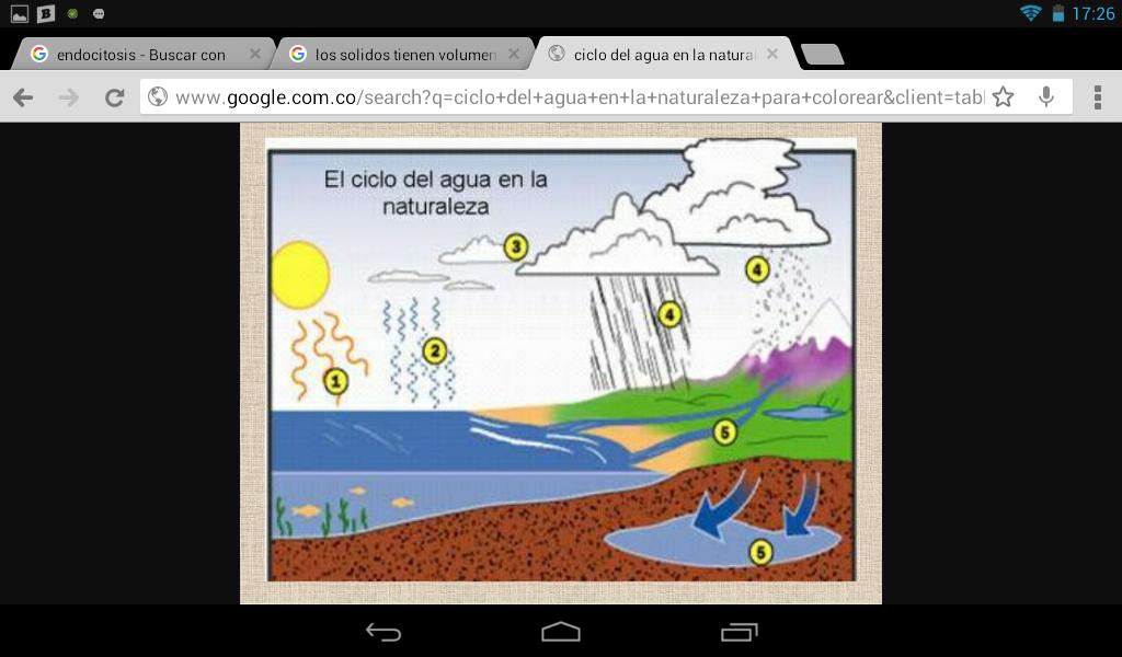 Analizando el ciclo del agua indica en que numerales se for Sublimacion progresiva